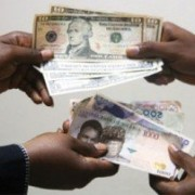 Nigerian Naira On the Fall Again In the Parallel Market