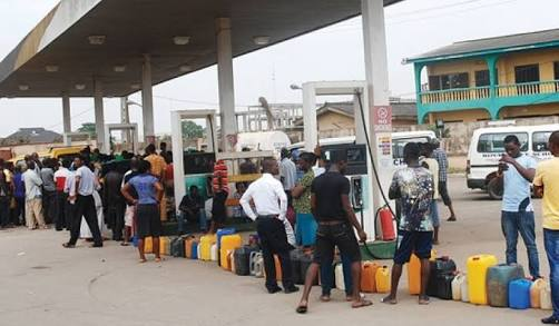 Fuel Scarcity in Nigeria, Blame President Buhari not Kachikwu – Bishop