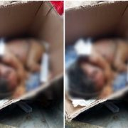 Sad Photos of a New Born Baby Dumped in Calabar