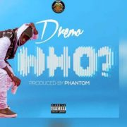 LYRICS : Dremo – WHO